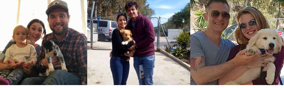 Triple A Marbella Animal Shelter / Refugio de animales
